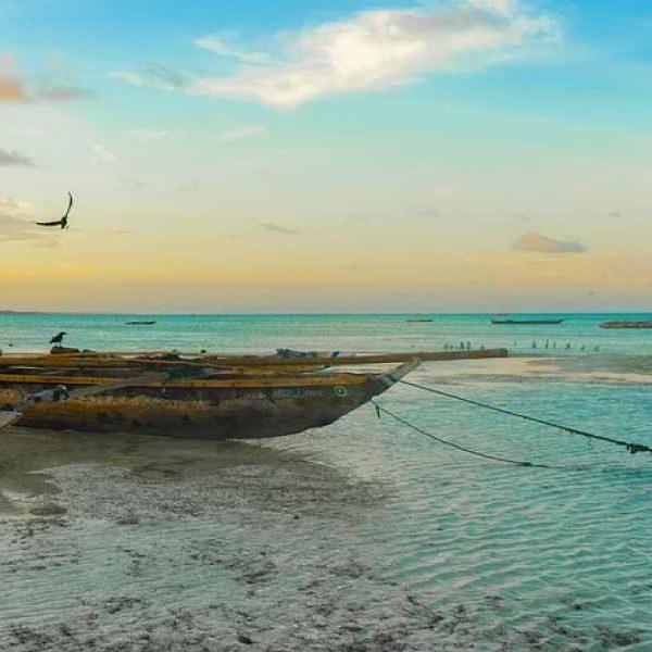 More Zanzibar Deals